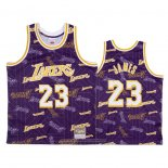 Camiseta Los Angeles Lakers Lebron James NO 23 Hardwood Classics Tear Up Pack Violeta